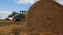 Es el cambio climático, pero no solo el cambio climático: los agricultores canadienses, al borde del abismo