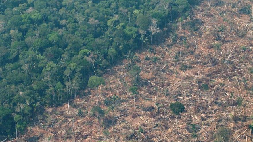 La tragedia por los incendios renueva la alarma sobre la deforestación en la Amazonía