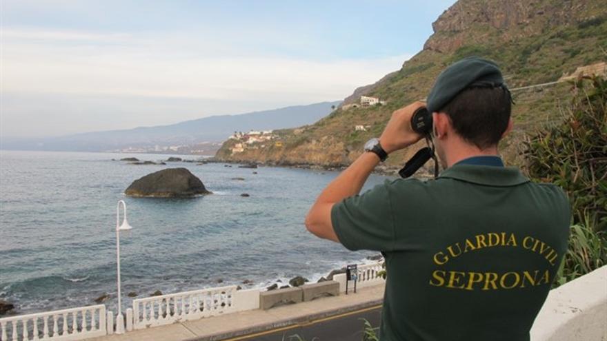 Agente del Seprona, en una inspección en la costa de San Juan de la Rambla