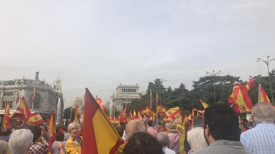 La Delegación de Gobierno en Madrid cifra en 10.000 los asistentes a la concentración de Cibeles