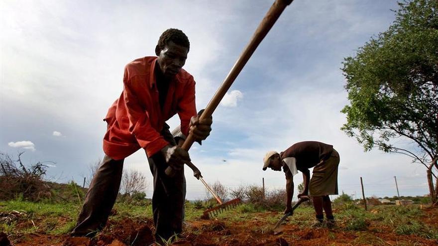 Malawi declara el estado de emergencia por la sequía causada por El Niño