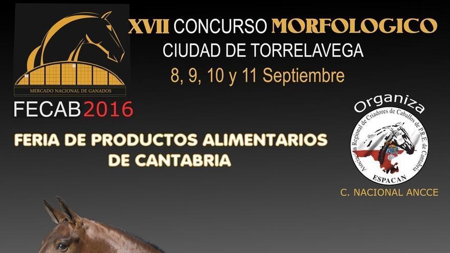 Un total de 94 caballos de 34 ganaderías participarán en el 'XVIII Concurso Morfológico de Torrelavega'