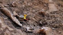 """Cuando los huesos """"hablan"""": cómo se exhuma una fosa del franquismo"""
