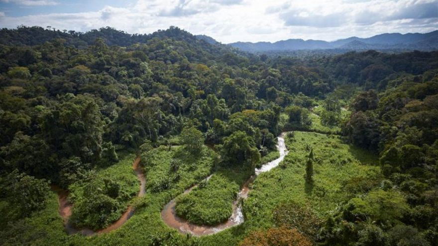 Los secretos de la selva de Honduras. Foto de National Geographic