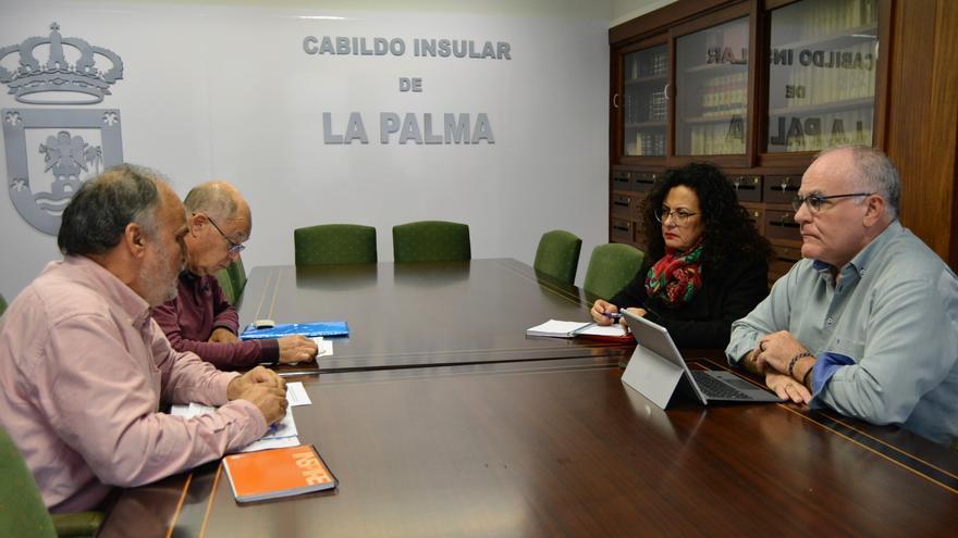 Reunión de Carlos Cabrera y Nieves Rosa Arroyo con representantes de la Plataforma por un Nuevo Modelo Energético.