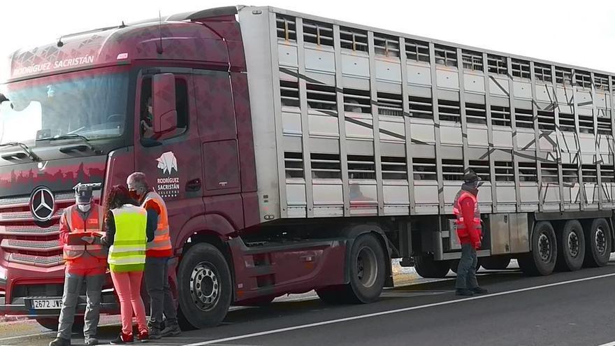 Policía Foral inspecciona un vehículo de transporte animal en carretera N-113