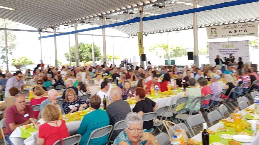 En la imagen, Día del Campo Palmero celebrado este sábado en Los Llanos.