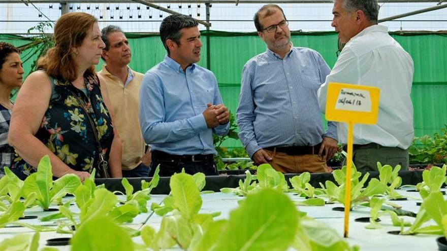 El vicerrector de Investigación de la Universidad de Las Palmas de Gran Canaria, José Pablo Suárez (2d), y el consejero de Agricultura del Gobierno canario, Narvay Quintero (c), durante su visita a la finca la Estación del Instituto Canario de Investigaciones Agrarias