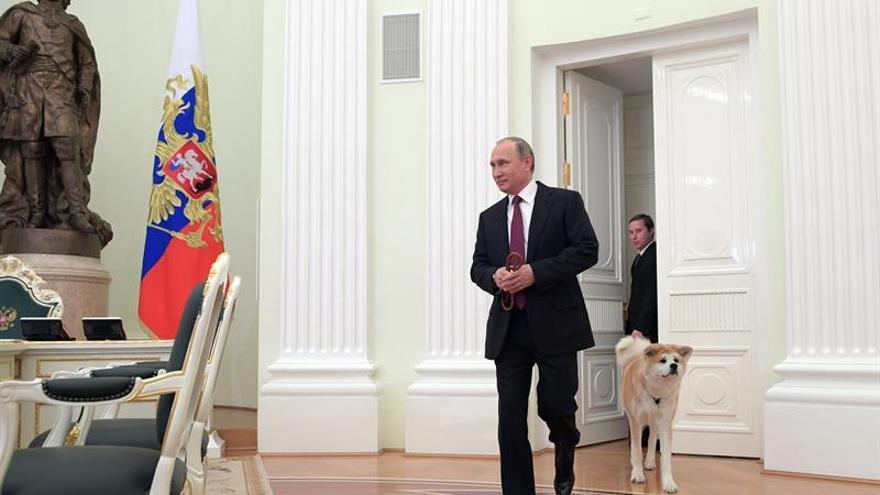 Putin ofrece sus condolencias por las víctimas del sangriento ataque en Berlín