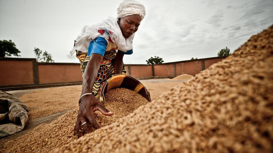 Una campesina coloca el arroz al sol para su secado en Burkina Faso. / Pablo Tosco/ Oxfam Intermón