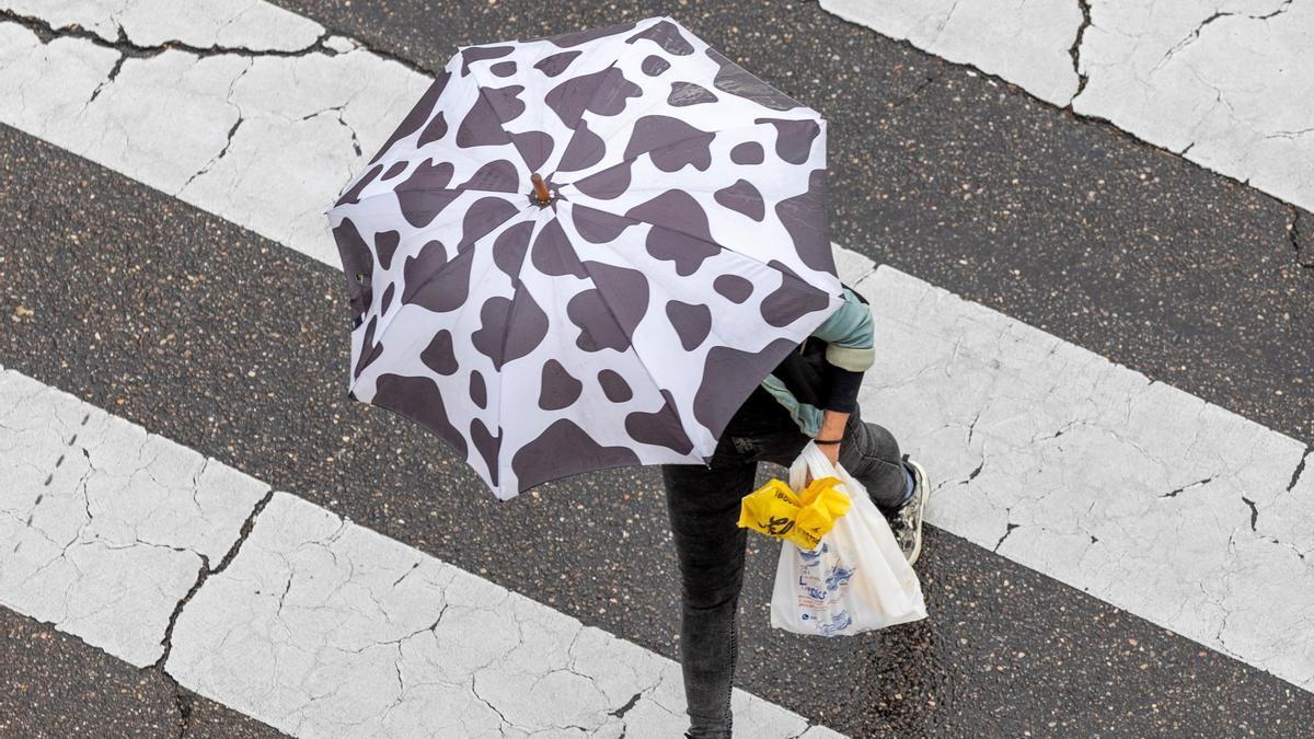 En la imagen de archivo una persona cruza un paso de cebra bajo la lluvia con un paraguas. EFE/JAVIER BELVER