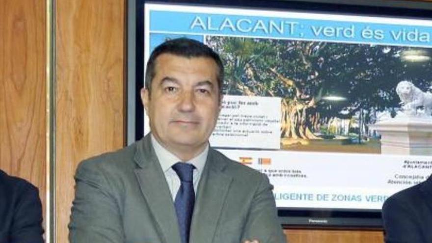 El vicealcalde de Alicante, Andrés Llorens
