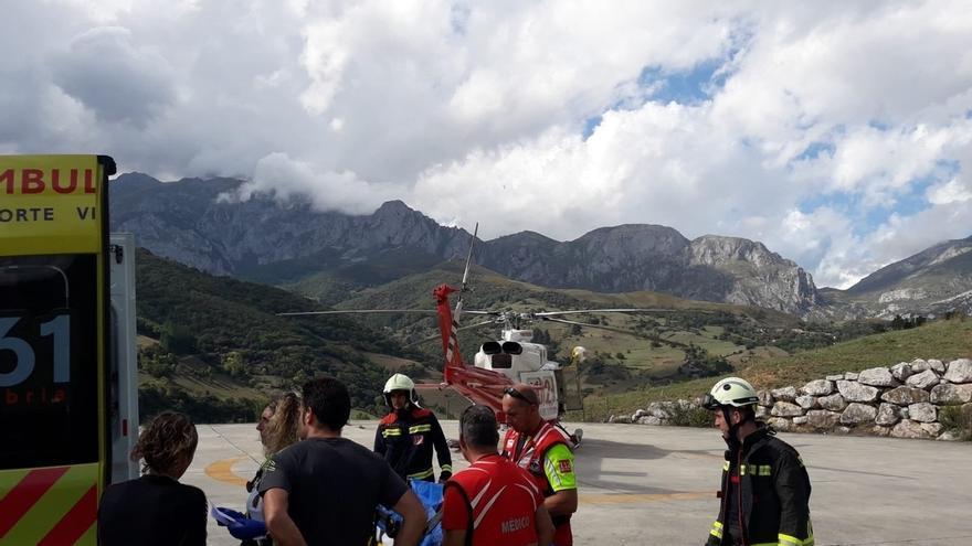 Evacuado en helicóptero un niños de tres años tras sufrir una caída en Fuente Dé