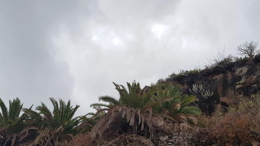 Imagen de archivo de cielo nublado en La Palma. Foto: LA PALMA AHORA.