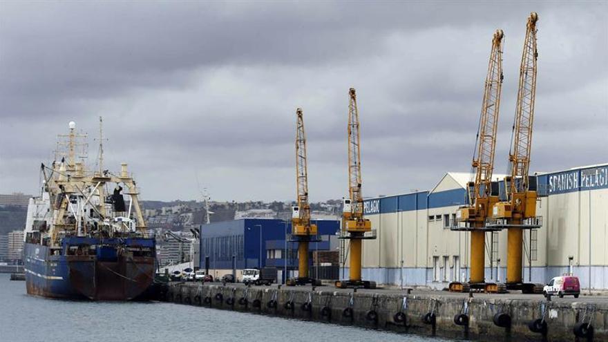 Cuatro grúas paradas en uno de los muelles del puerto de Las Palmas