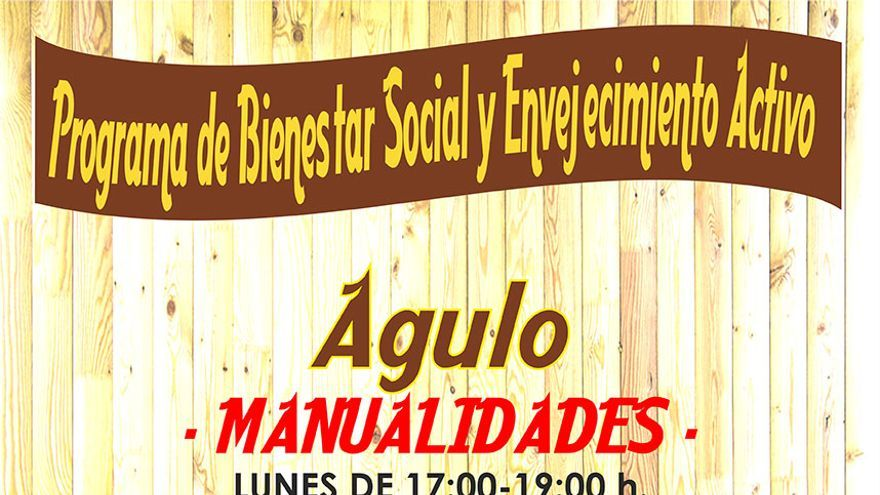 Programa de Bienestar Social Agulo 2014