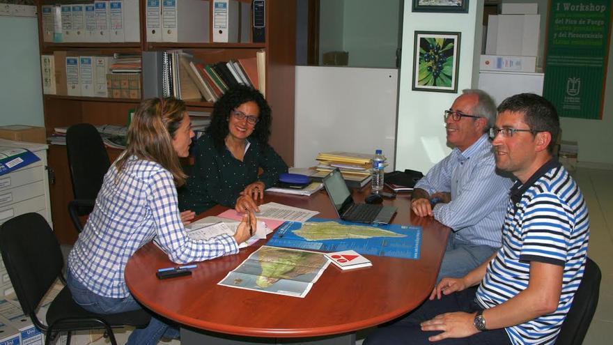 En la imagen, reunión mantenida por la consejera insular de Medio Ambiente con el vicepresidente en España de la Asociación Internacional de Ciclismo de Montaña y otros técnicos.