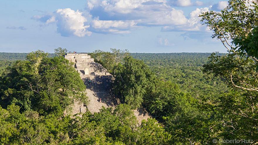 Yacimiento maya de Calakmul
