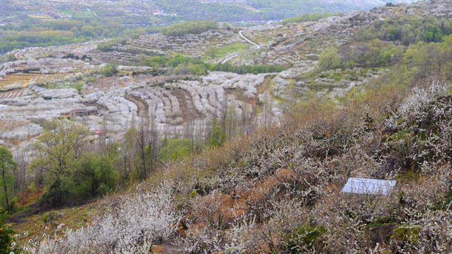 Fallece una niña de 12 años durante una excursión por el Valle del Jerte