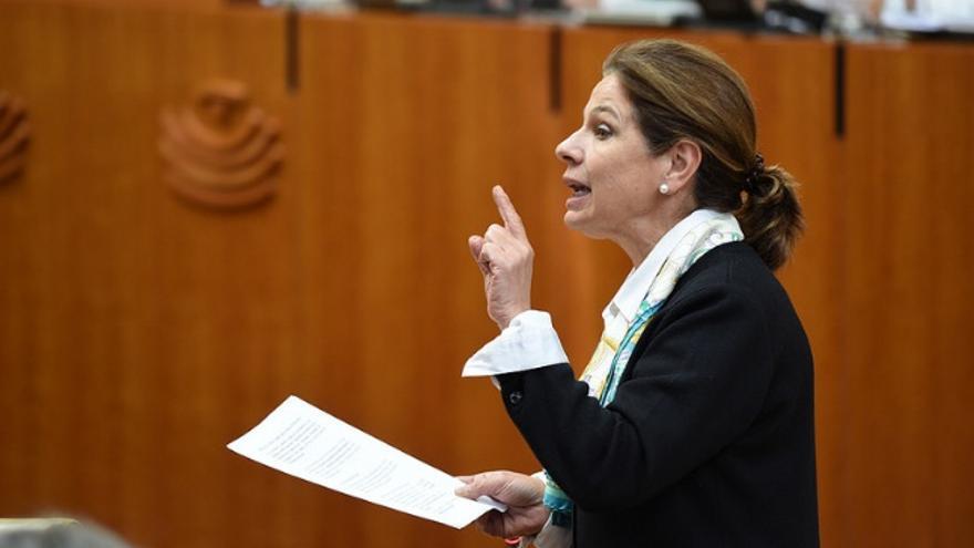 La consejera de Hacienda y Administración Pública, Pilar Blanco Morales, en el pleno de la Asamblea