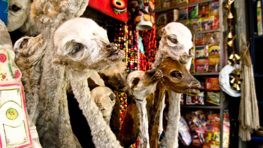 Llamas disecadas en una tienda del Mercado de Las Brujas de La Paz.