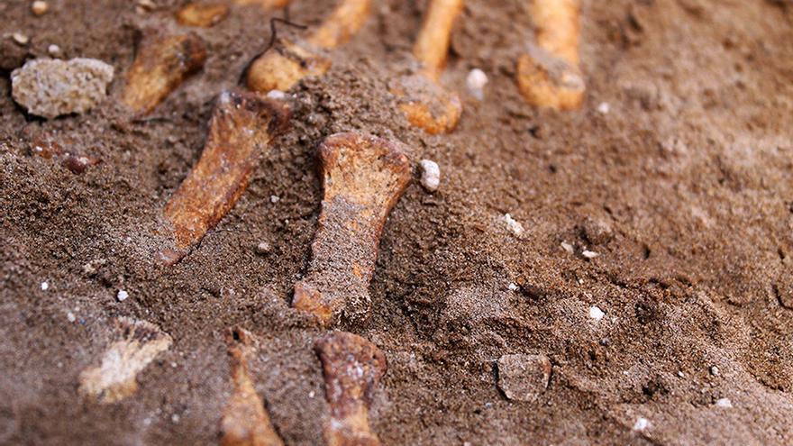 Restos óseos en la fosa común del cementerio de Puerto Real (Cádiz). / JUAN MIGUEL BAQUERO