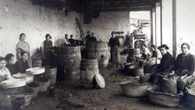 Aceitunas del siglo XIX para las mesas de los cinco continentes