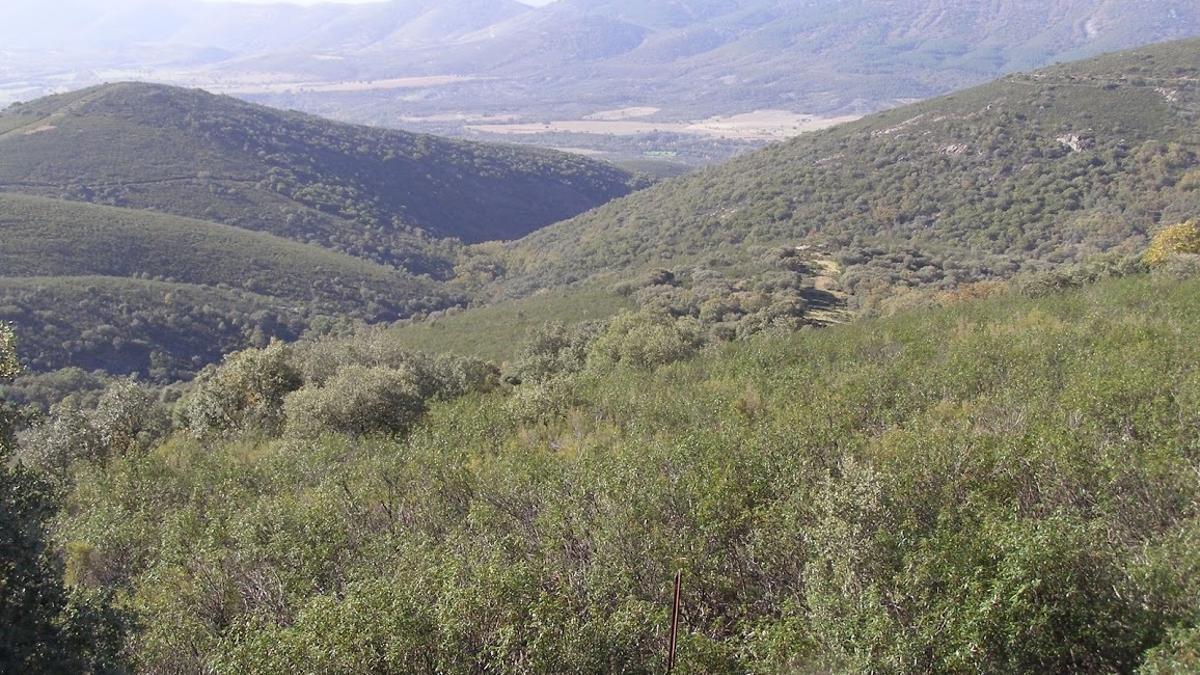 Paisaje del Parque Nacional de Cabañeros