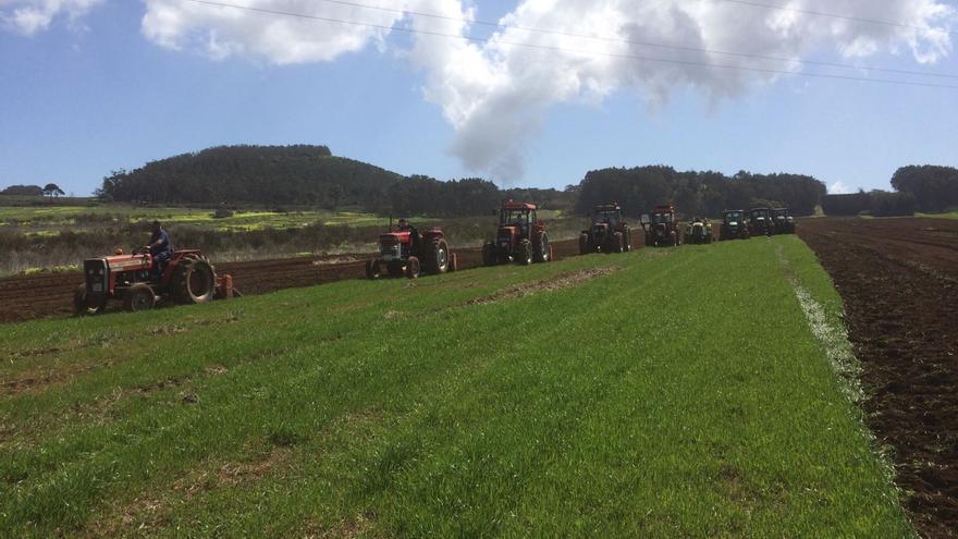 Los nueve tractores que trabajaron este viernes en tierras de Los Rodeos, en La Laguna