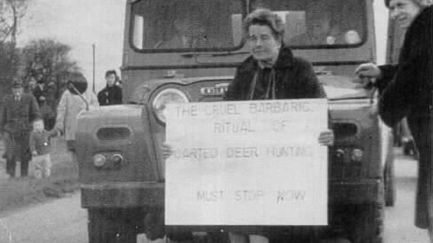 Saboteadora de la caza en Inglaterra, años 60.