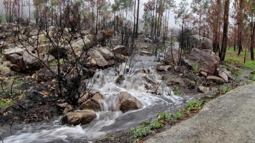 Arrastre de cenizas y lodo tras un incendio en 2013