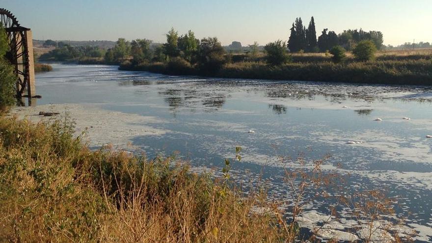 El río Tajo en su paso por Toledo cubierto de espuma   Plataforma Tajo Toledo