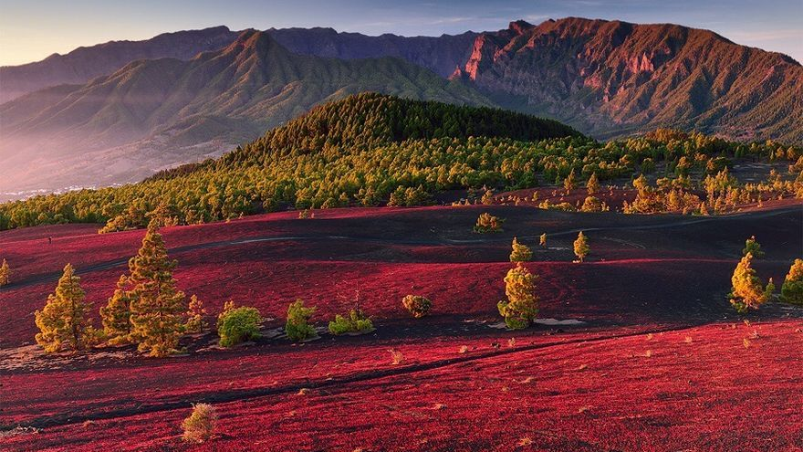 Paisaje volcánico y dorsal de Cumbre Vieja. Foto: SAÚL SANTOS