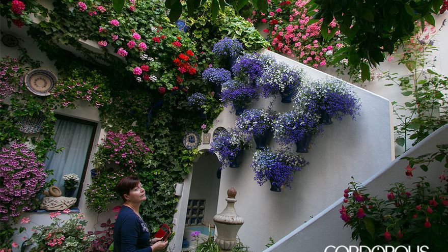 Patio ganador en arquitectura moderna en la Calle Pastora, 2 | MADERO CUBERO