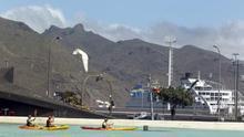 Piragüistas aprovechan el buen tiempo, este martes, en Tenerife. (EFE/Cristóbal García)