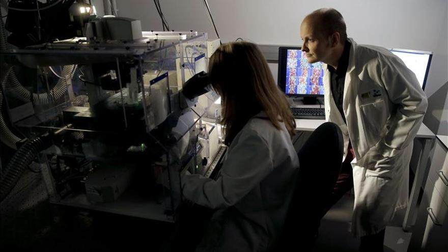 Diseñan un anticuerpo artificial que puede combatir la leucemia