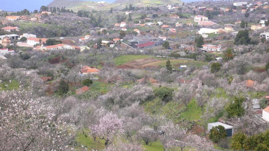 Panorámica del municipio de Puntagorda con los almendros en flor.