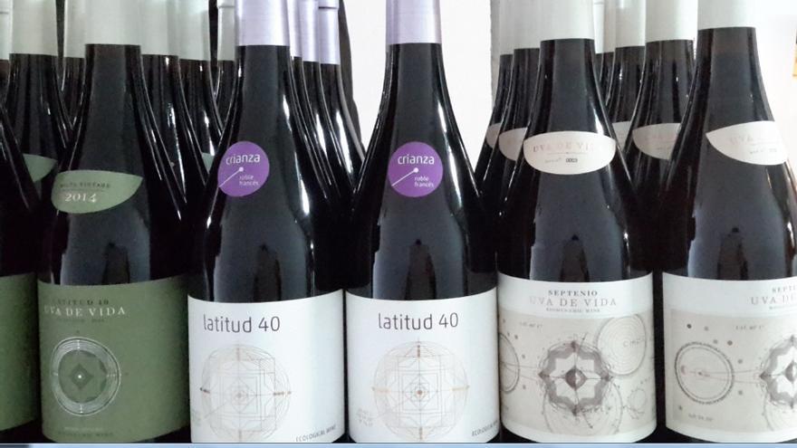 Vino biodinámico 'Uva de Vida' procedente de Santa Olalla (Toledo)