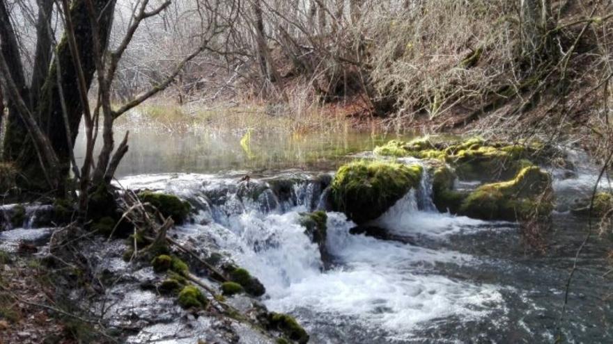 Reserva fluvial / Santiago Martín Barajas (EA)