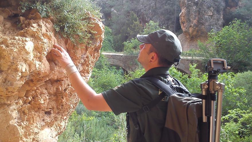 Agentes medioambientales dragón de roca en Albacete