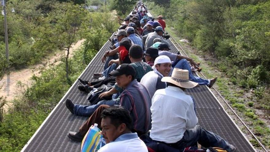 Un grupo de migrantes viaja en el tren conocido como La Bestia (Albergue Hermanos del Camino)
