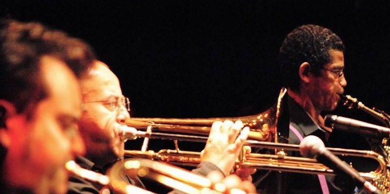 jazz-malakids