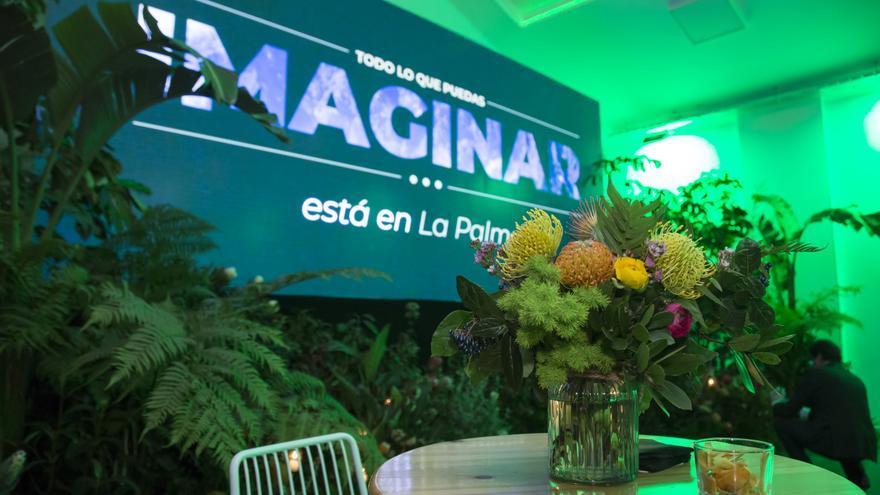 Las proteas de La Palma estuvieron presentes en Fitur.