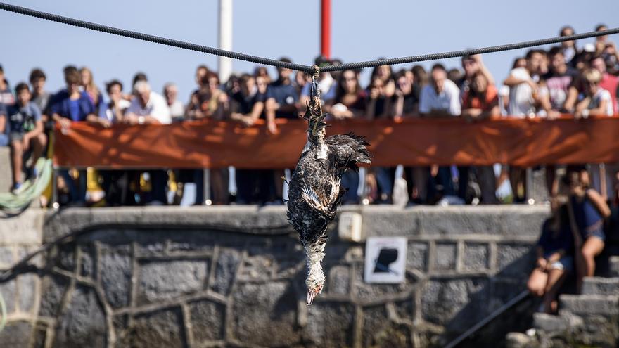 Antzar Eguna / Día de gansos. Lekeitio 2016. Foto: Traslosmuros.com