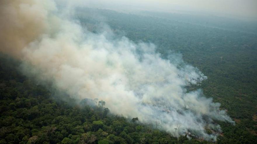 La mafia detrás de la muerte, la deforestación y el fuego en la Amazonía