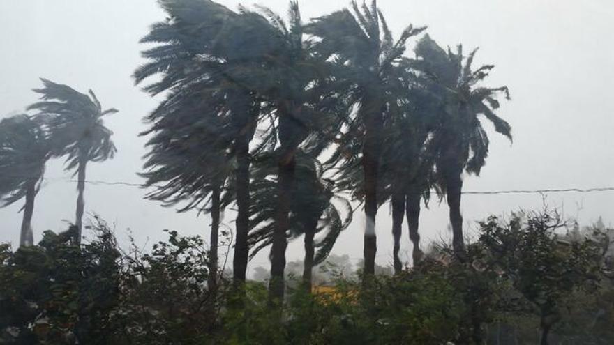 Imagen de un temporal de viento.