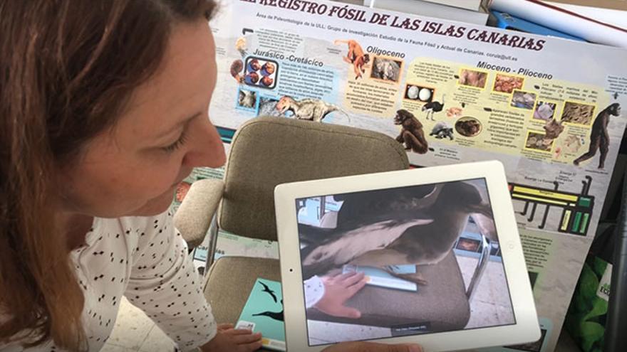 Carolina Castillo, responsable del Área de Paleontología del Departamento de Biología Animal, Edafología y Geología de la Universidad de La Laguna