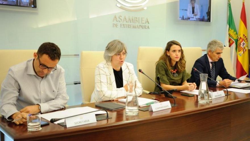 Comparecencia de la consejera de Movilidad, Transporte y Vivienda, Leire Iglesias