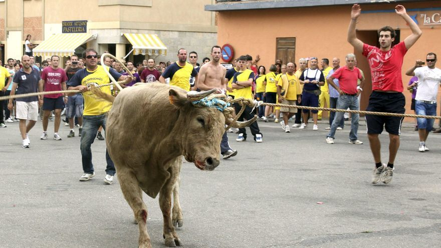 Imagen de la celebración del Toro Enmaromado en Astudillo (Palencia) en 2012. / BRAGIMO/EFE