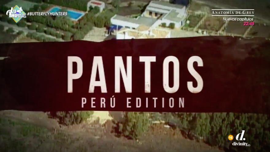La intro de Narcos con la Pantoja y familia, lo último de Cazamariposas